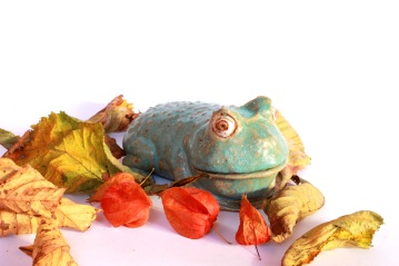 Custom made frog, 2014