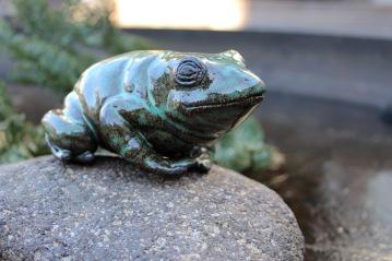 Frog, 2018